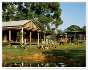 experience paris tours:Australian Outback Experience