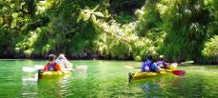 Winter 1 Day Guided Sea Kayak - Queen Charlotte Sound