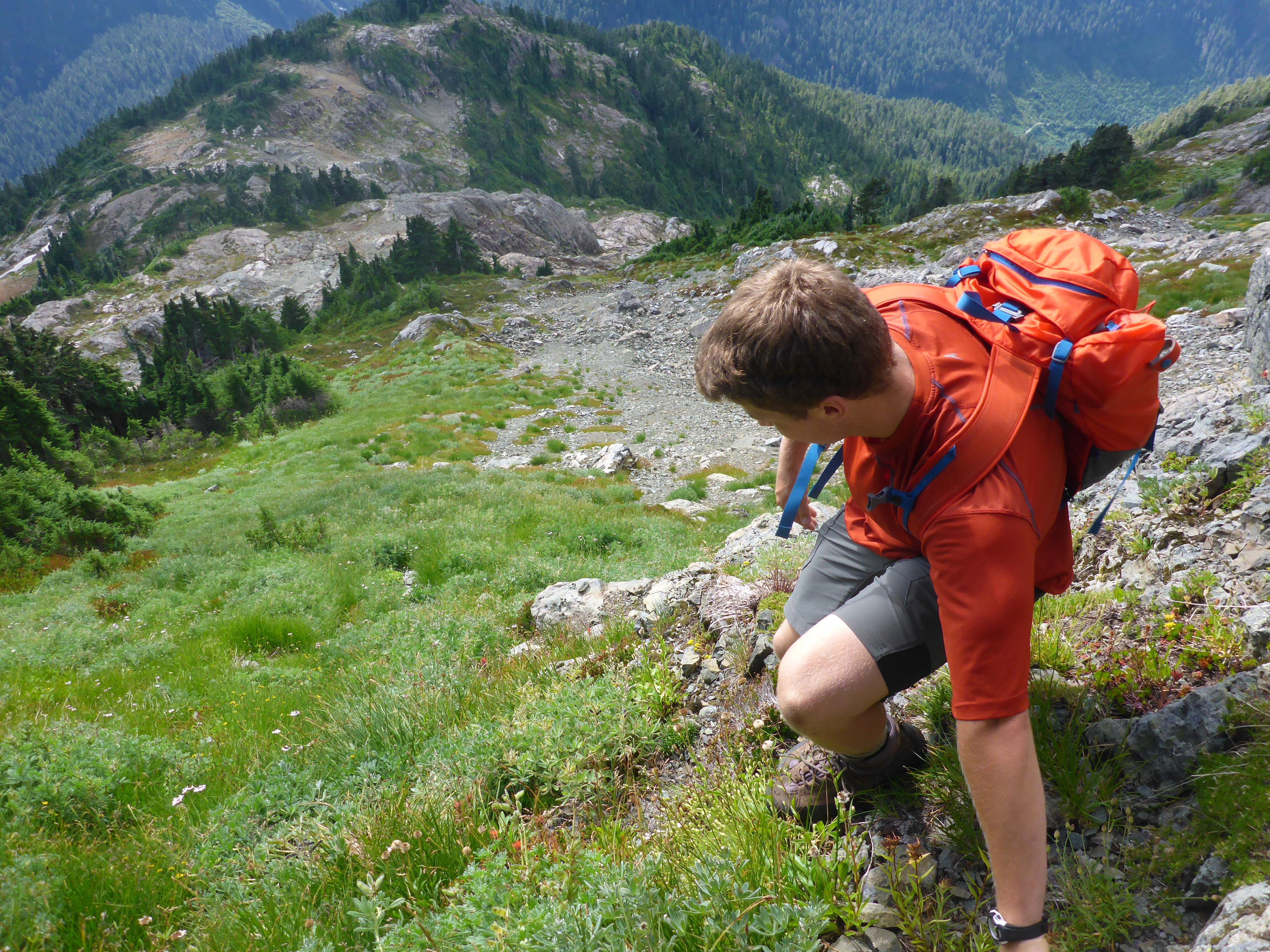 Things To Do In Vancouver:Sea to Sky Hiking Adventure Tour