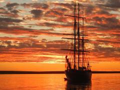 New Year's Sail
